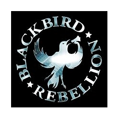 Blackbird Rebellion © Stadt Winsen (Luhe)